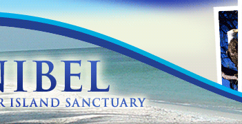 Sanibel - A barrier island sanctuary - Banner